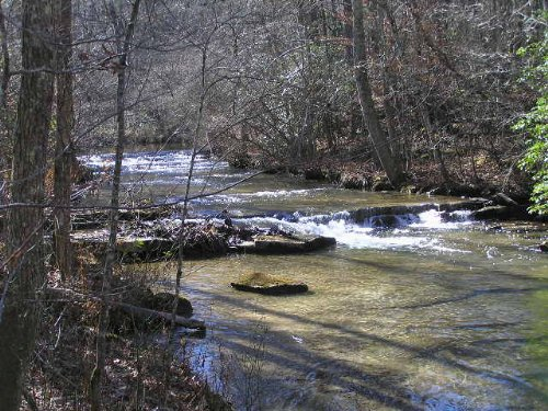 Creek, Woods, 33 Acres, And Roads : Palmer : Grundy County : Tennessee