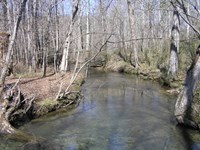Creek, Woods, Private : Palmer : Grundy County : Tennessee