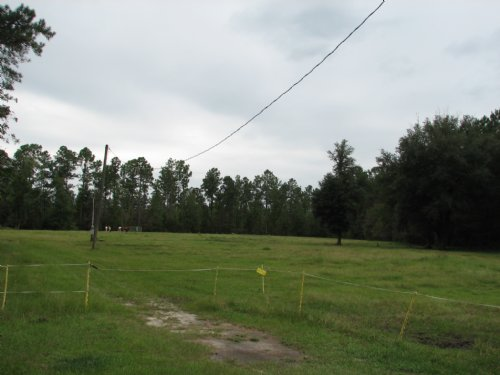Chatham County Potential Commercial : Savannah : Chatham County : Georgia
