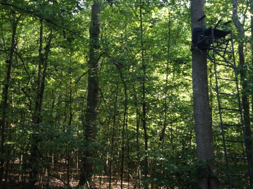 22 Ac. Recreational Hideaway : Wesson : Copiah County : Mississippi