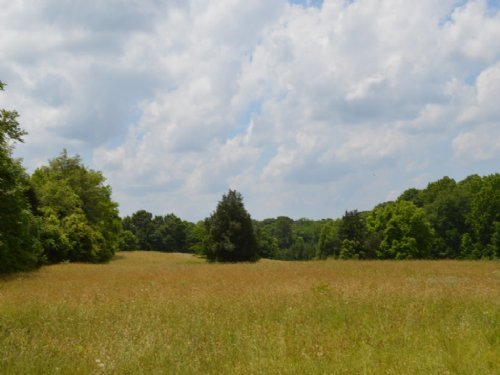 17.70 Acre Non-restricted Tract : Spartanburg : South Carolina