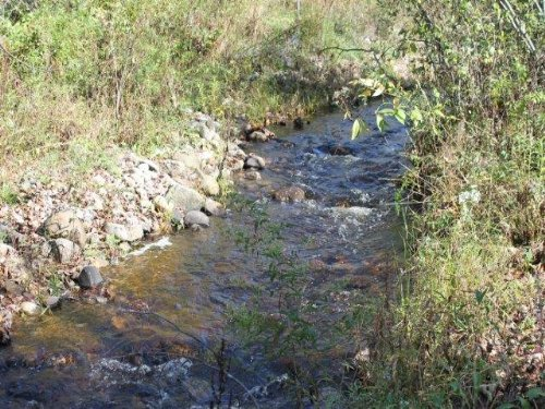 220 Acres Timber Investment Stream : Oppenheim : Fulton County : New York