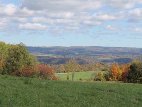45 Acres Farmland Creeks Views : Newport : Herkimer County : New York