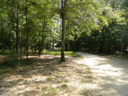 15 Ac. Close To Downtown Athens : Athens : Clarke County : Georgia