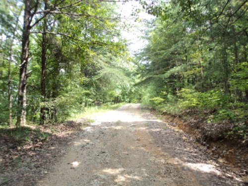 134+/- Acres Within Tnf : Munford : Talladega County : Alabama