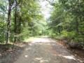 134+/- Acres Within Tnf : Munford : Talladega County : Alabama