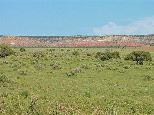 Az 37 Acre Self Sufficiency Ranch : Saint Johns : Apache County : Arizona