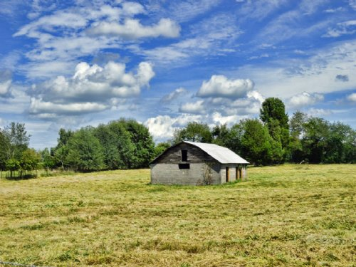 11  Acre Farm : Chesnee : Cherokee County : South Carolina