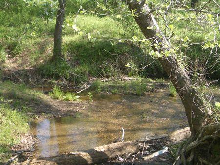 624 Acres On Sulphur Springs Road : Fairmount : Gordon County : Georgia
