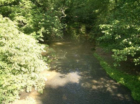 126 Acres With Great Creek Frontage : Calhoun : Gordon County : Georgia
