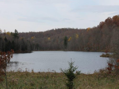 Waterfront 6 Acres Owl Pond : Hermon : St. Lawrence County : New York