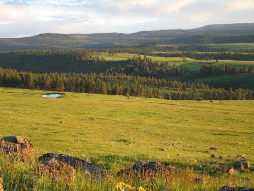 Elk Song Ranch : La Grande : Union County : Oregon