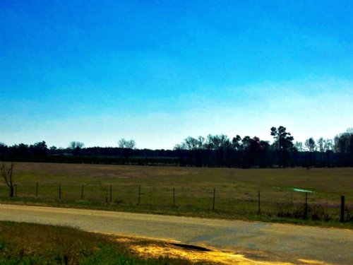 13+/- Acres And Home On Banks Dairy : Statesboro : Bulloch County : Georgia