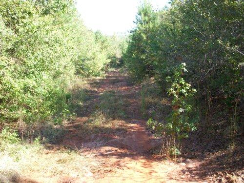 Longview Tract : Irwington : Wilkinson County : Georgia