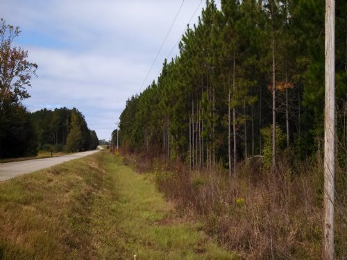 Bank Owned - 183 Acres : Register : Bulloch County : Georgia