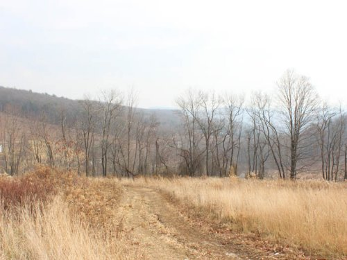 32 Acres Land Benton Pa : Benton : Columbia County : Pennsylvania
