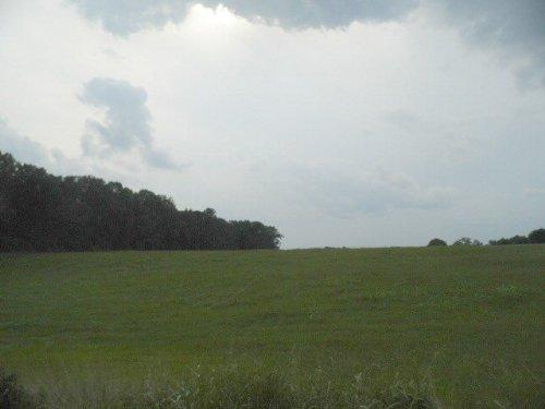 Jones Tract 1 : Rice : Prince Edward County : Virginia