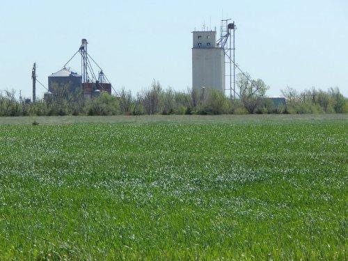 Marmie 69 : Windham : McPherson County : Kansas