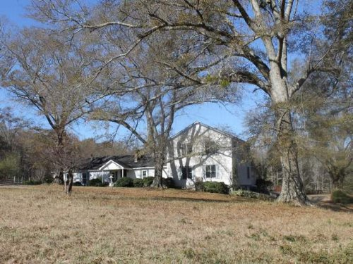 52+/- Acre Farm : Ashland : Clay County : Alabama