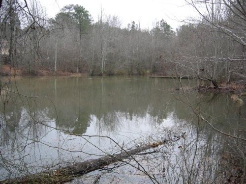 Investors Bargain : Palmetto : Fulton County : Georgia