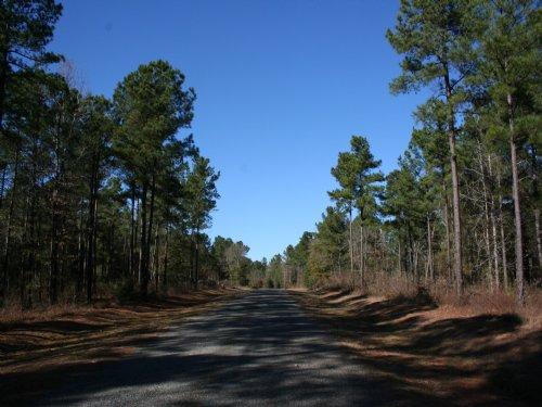 Plantation At Evergreen + 186 Acres : Dublin : Laurens County : Georgia