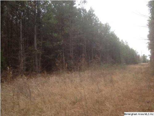 Hwy 231 Ashville : Ashville : St. Clair County : Alabama