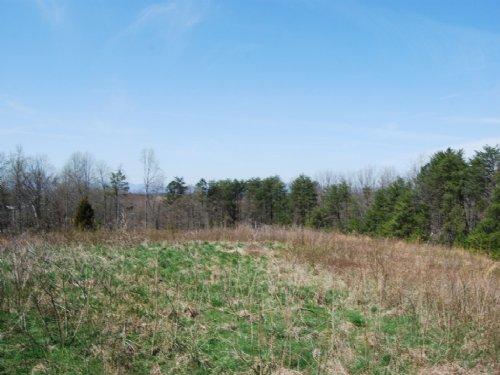 11.63 Acres Near Cooley Springs : Chesnee : Spartanburg County : South Carolina