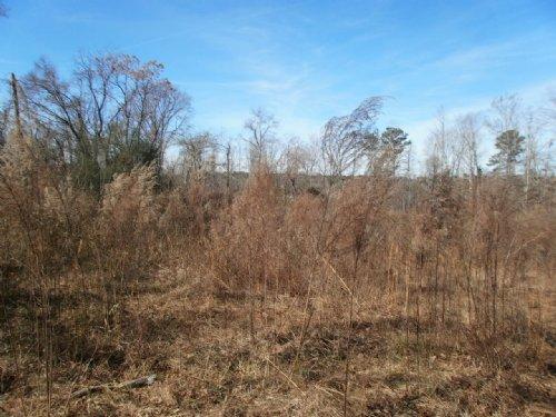 12.64 Acres W/creek In Arnoldsville : Arnoldsville : Oglethorpe County : Georgia