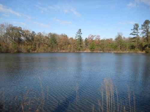 Chapman Pond Tract - New Low Price : Gray : Jones County : Georgia