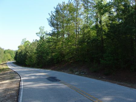 7.5 Acre Wooded Home Site : Carrollton : Carroll County : Georgia