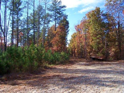 Hunter's Retreat : Drakes Branch : Charlotte County : Virginia