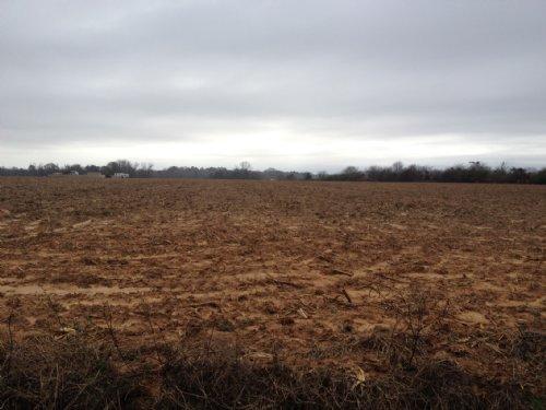 8 +/- Acres : Troy : Pike County : Alabama