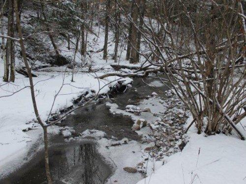 32 Acres Adirondacks With Stream : Norway : Herkimer County : New York