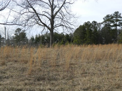 3 Acre Open Lot With Well & Septic : Union Point : Greene County : Georgia