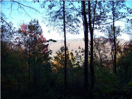 60+/- Acres In South Pittsburg, Tn : South Pittsburg : Marion County : Tennessee