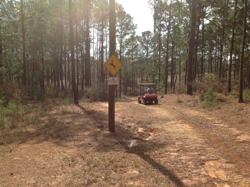 Floyd Tract : Luverne : Crenshaw County : Alabama