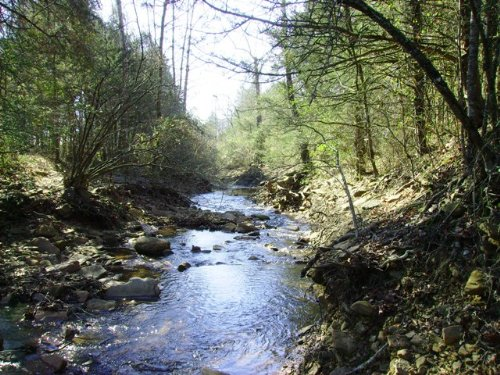 174 +/- Acre Hunting Property : Clarksville : Johnson County : Arkansas