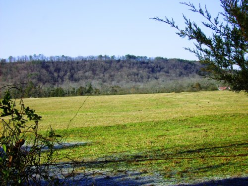 95 +/- Acre Mini Farm : Clarksville : Johnson County : Arkansas