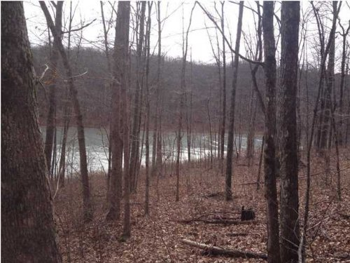 4.00+/- Acres Lakefront Property : Dunlap : Sequatchie County : Tennessee