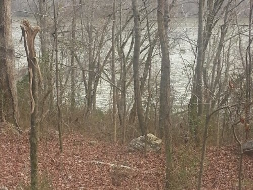 5.59+/- Lakefront Property : Whitwell : Marion County : Tennessee