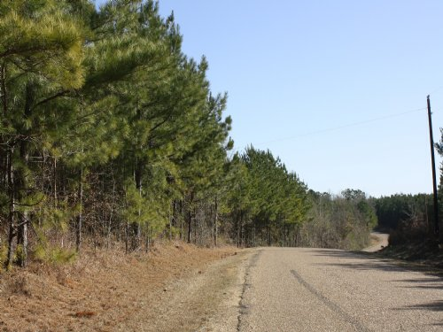 442 Acres : Brookhaven : Lincoln County : Mississippi