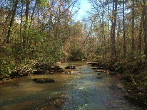 Walnut Creek Timberlands : Gray : Jones County : Georgia