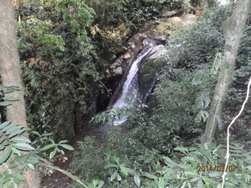 79 Acres Riverfront-Pasture-Woods : Orosi Valley : Costa Rica