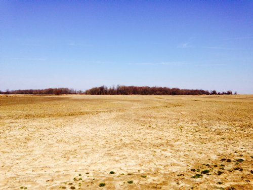 29 +/- Acres Farm Land For Sale : Wheatley : St. Francis County : Arkansas