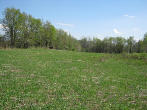 18 Acres Borders State Forest : Summerhill : Cayuga County : New York