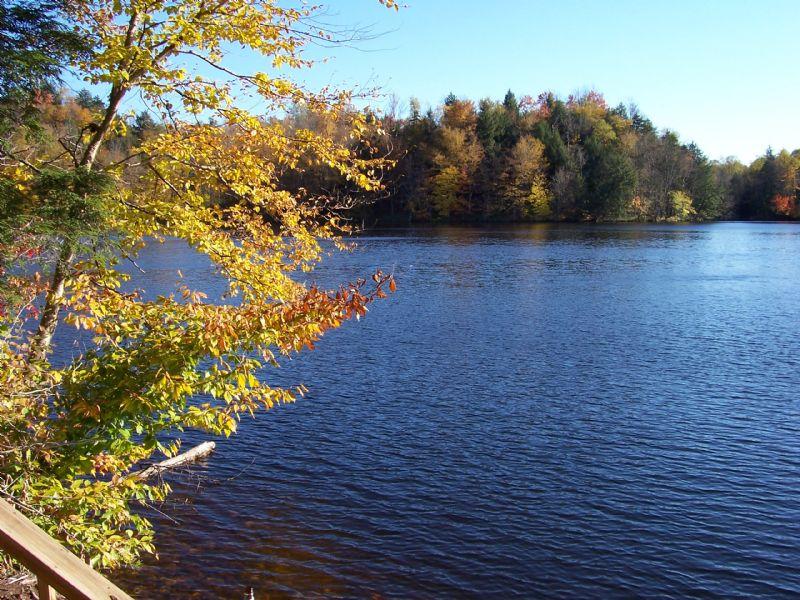 Effley Falls Lakefront, Adirondacks : Croghan : Lewis County : New York