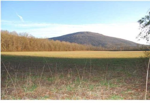 Dratically Reduced Family Estate : Kimball : Marion County : Tennessee