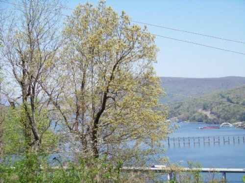 3.9+/- Ac Foreclosure W/ Waterview : Guild : Marion County : Tennessee