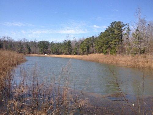 122.99 Acres - Gaston Sc : Gaston : Lexington County : South Carolina