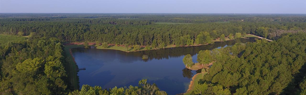 South Carolina Land for Sale : LANDFLIP